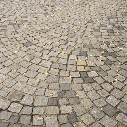 The radiant cobblestones, Sony ILCA-77M2, Tamron SP AF 17-50mm F2.8 XR Di II LD Aspherical [IF]