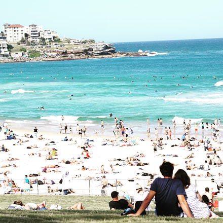 Summer in Bondi, Sony ILCE-6000, Sigma 60mm F2.8 DN