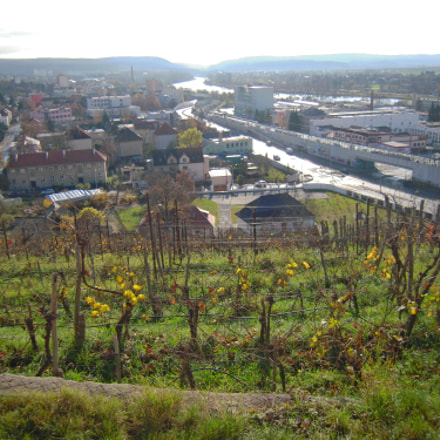 Prague vineyard, Nikon COOLPIX S620