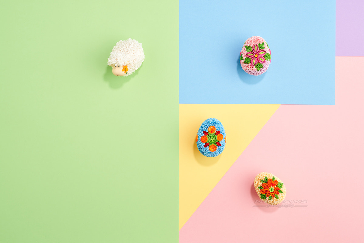 Easter eggs with paper on colorful pastel design graphic backgro