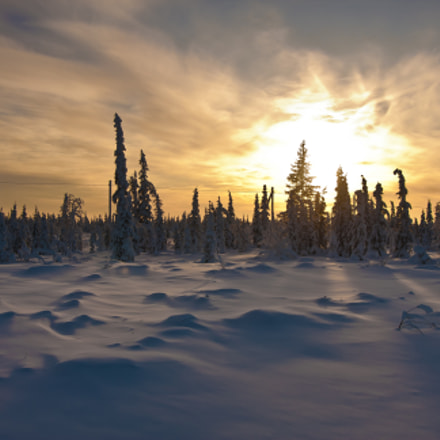 Sunset over the Yamal, Canon EOS 40D, Sigma 20mm EX f/1.8
