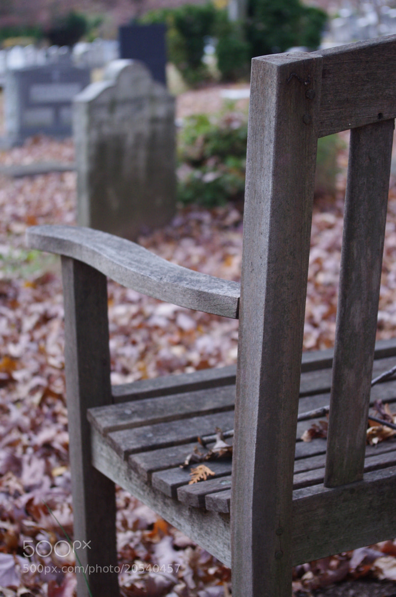Photograph Bench in grave yard by Susan Southard on 500px
