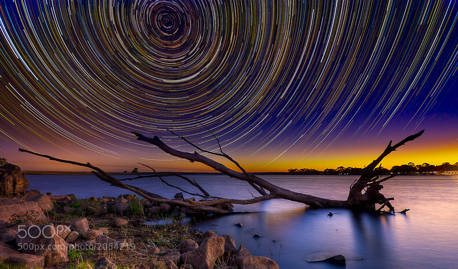 Starry Night by Lincoln Harrison (Hakka)) on 500px.com