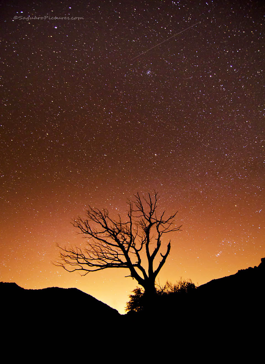 Photograph Stars over Tucson by Greg McCown on 500px
