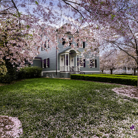 The Skinner-House c 1798, Canon EOS 70D, Canon EF-S 10-18mm f/4.5-5.6 IS STM