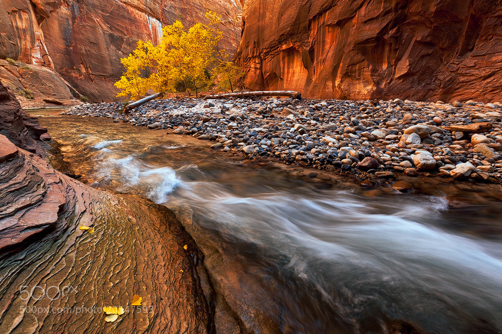 Photograph Fiery Flow by Atenciophotography on 500px