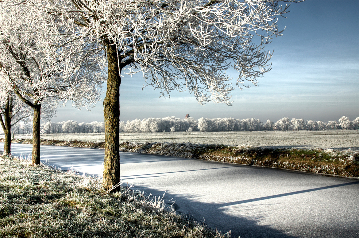Photograph Frosty Perspective by Daniel Bosma on 500px