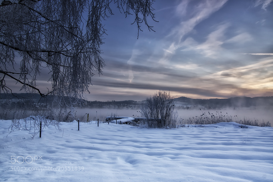 Photograph winter dream by Sandra Löber on 500px