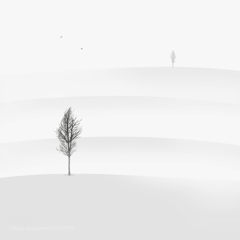 Photograph Distance by Hossein Zare on 500px