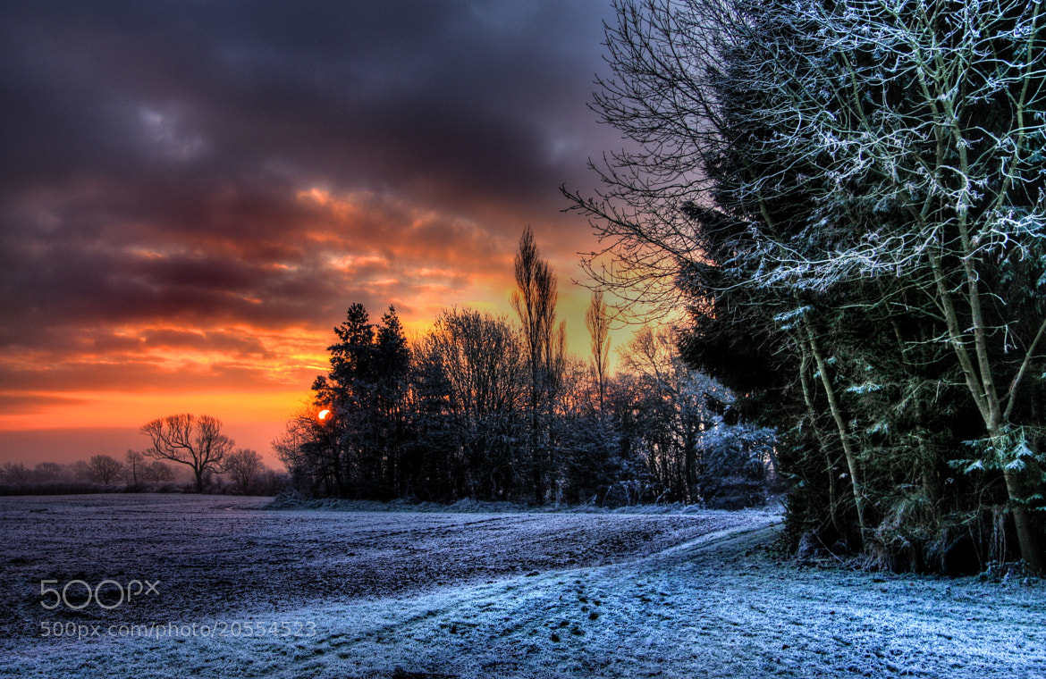 Photograph It's Beginning to Look a Lot Like Christmas! by Alan Sheers on 500px