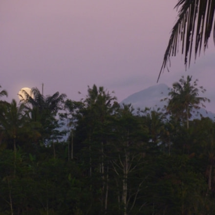 Sunrise and Moonset, Panasonic DMC-ZX1