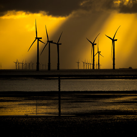 Windfarms on the Mersey, Canon EOS 5D MARK IV, Canon EF 500mm f/4.5L