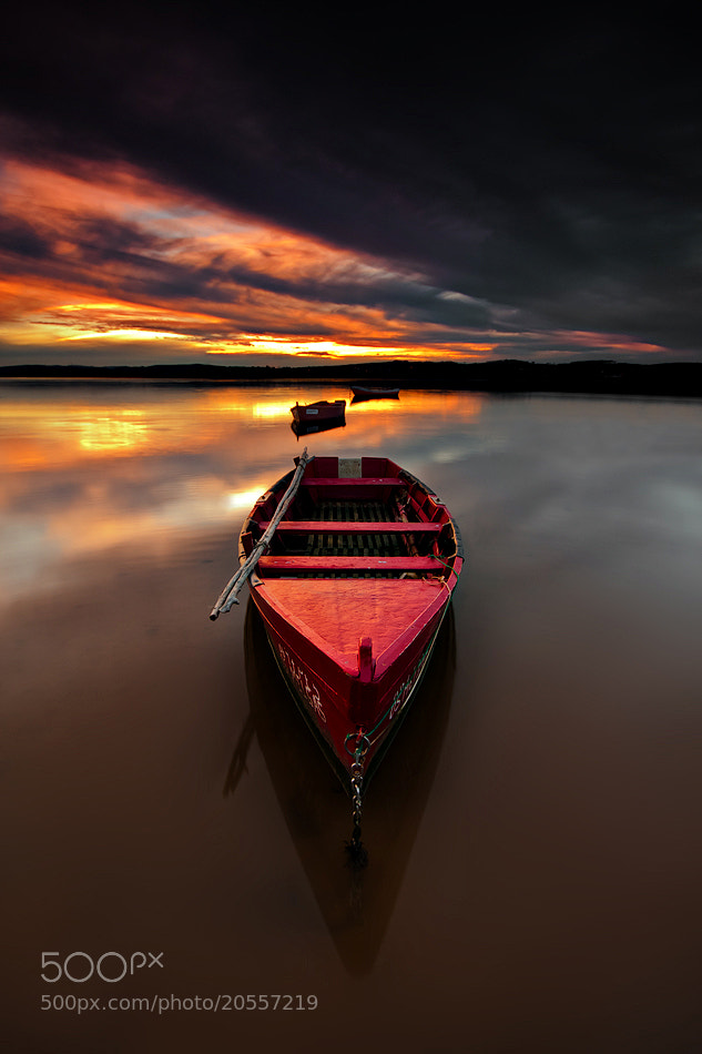 Photograph Red by Hugo Borges on 500px