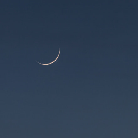 Small moon, light up, Canon EOS 5D MARK II