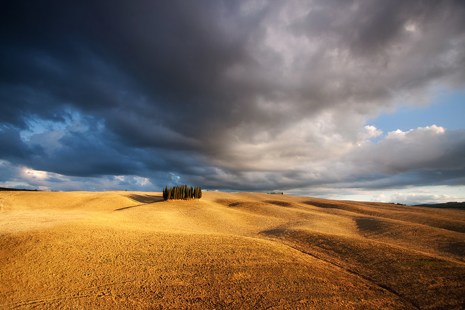 Photograph Clump by Marcin Sobas on 500px