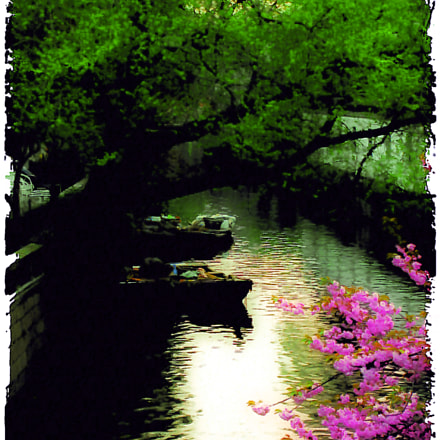 spring in Suzhou, Canon POWERSHOT SX110 IS