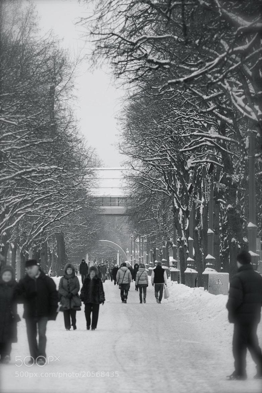 Photograph Untitled by Alexandra Konstantinova on 500px