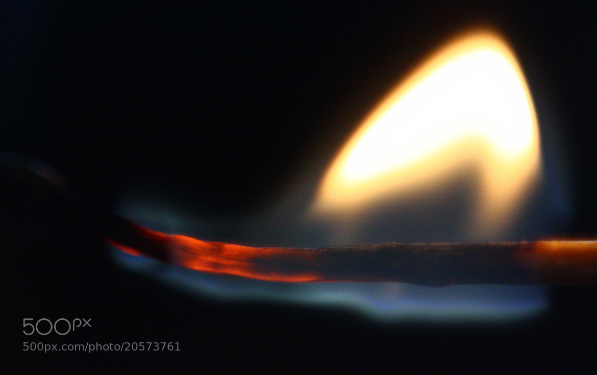 Photograph Fire starter. by Sivakumar Gopalakrishnan on 500px