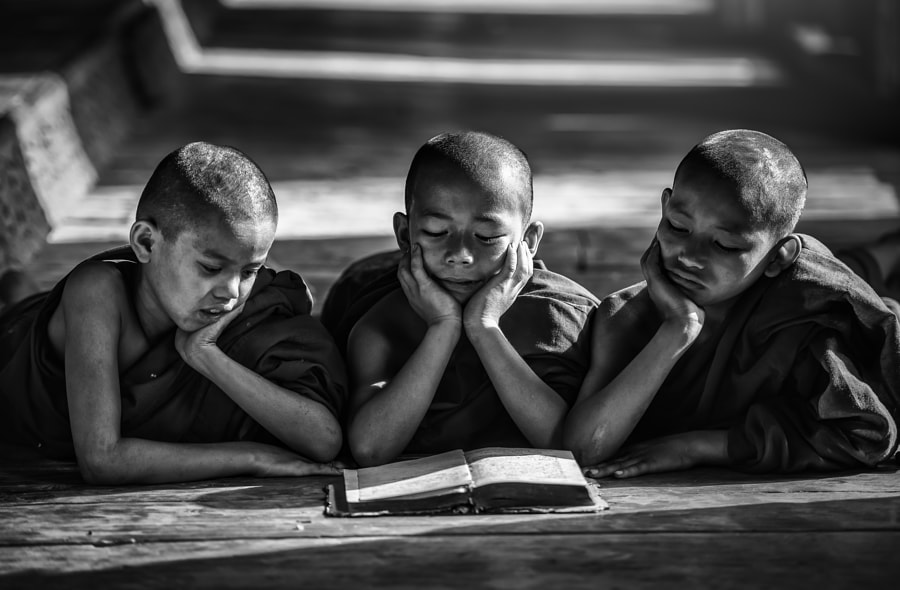 Novice monk reading books de Sasin Tipchai en 500px.com