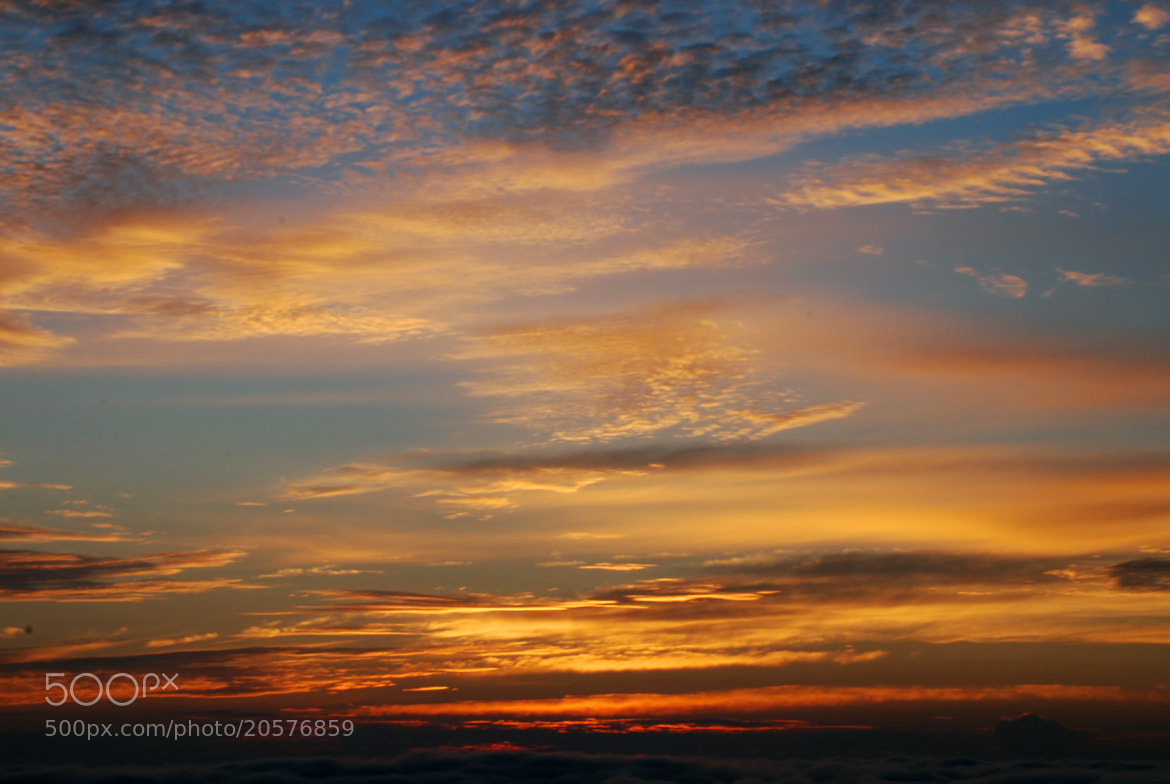 Photograph morning sky by Shingo .N on 500px