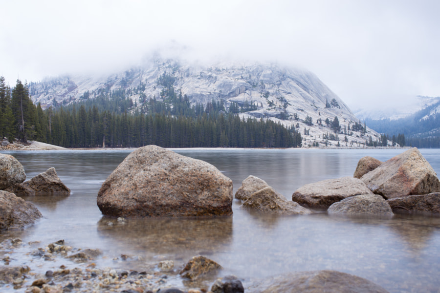 Yosemite National Park by Eric Daoud on 500px.com