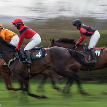 Berwickshire Point To Point, Canon EOS-1D MARK II, Sigma 50-200mm f/4-5.6 DC OS HSM + 1.4x