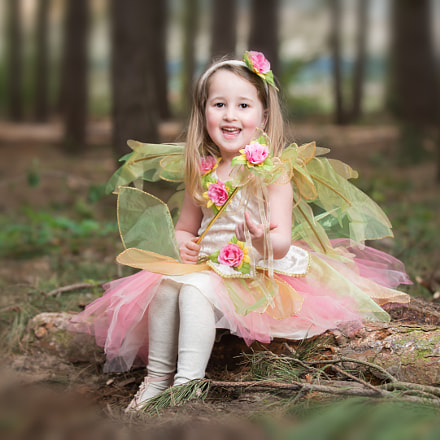 fairy elsie, Nikon D800, AF-S Zoom-Nikkor 80-200mm f/2.8D IF-ED