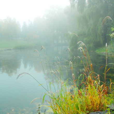 One foggy morning, Canon POWERSHOT SX1 IS