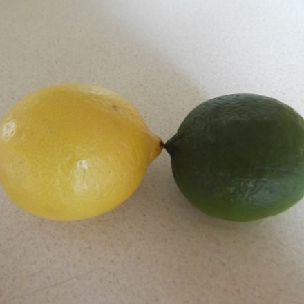 Lemon and Lime, Fujifilm FinePix T350