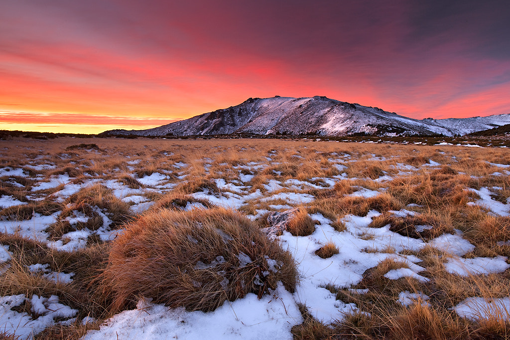 Photograph Glowing morning by Enrique F. Ferrá on 500px