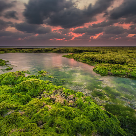 Low tide at dusk, Canon EOS 80D, Sigma 10-20mm f/3.5 EX DC HSM