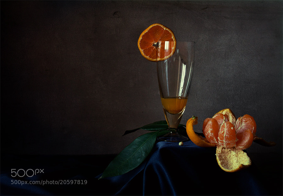 Photograph Untitled by Viktoria Imanova on 500px