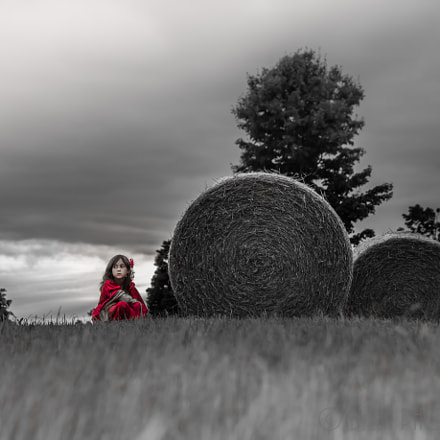 Beauty and the Bale, Canon EOS REBEL T1I, Canon EF 70-200mm f/4L IS