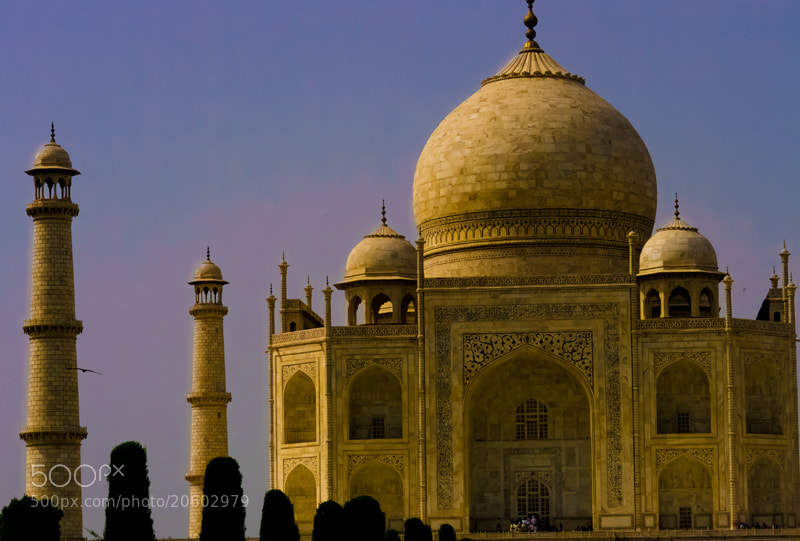 Photograph Taj by Carrie Stiles on 500px
