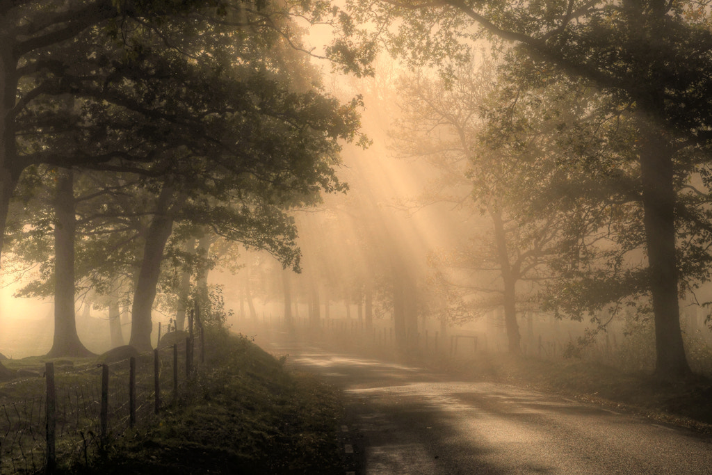 Photograph Take me home country road, to a place i belong... by Almqvist Photo on 500px