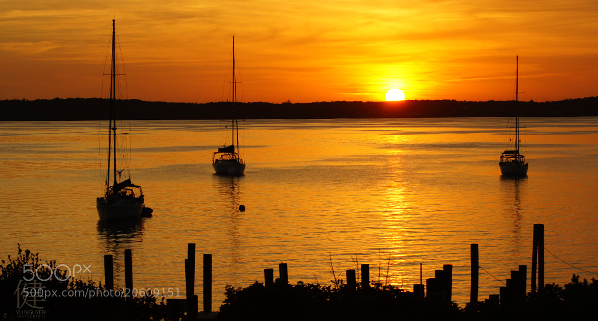 Photograph Harbour Island Sunset by Ken Nguyen on 500px
