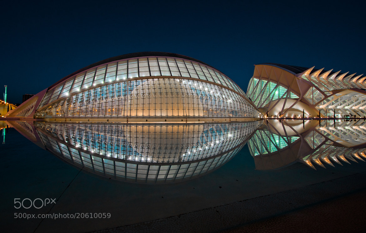 Photograph A fish called Wanda by César Asensio Marco on 500px