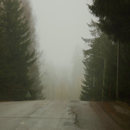 Foggy road, Canon EOS 550D, Canon EF-S 55-250mm f/4-5.6 IS