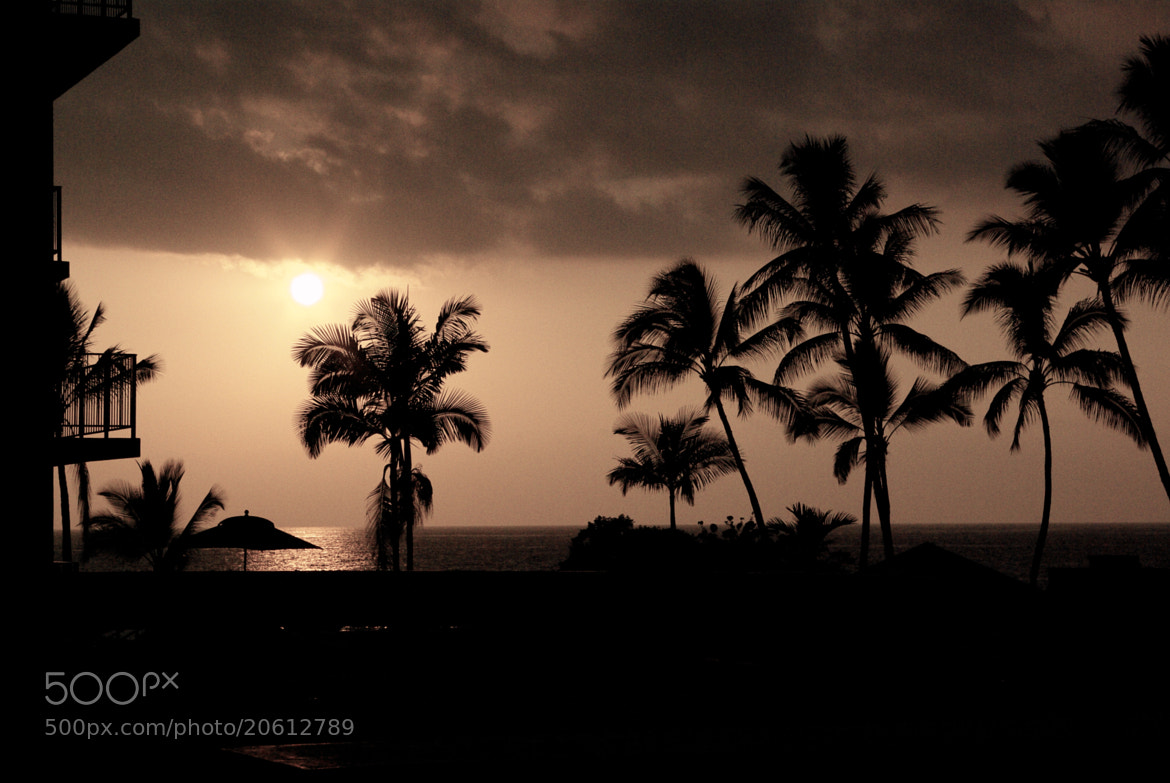 Photograph Hawaii Sunset by Gilles Le Drian on 500px