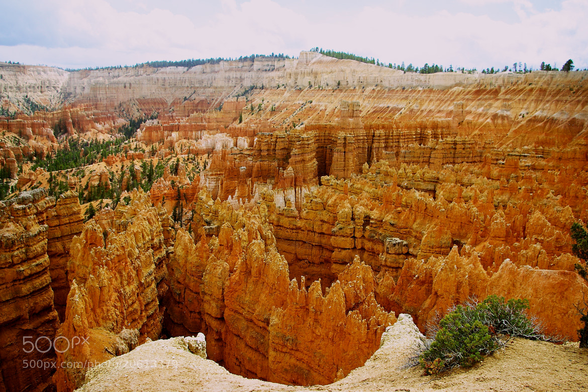Photograph Brice Canyon by Gilles Le Drian on 500px
