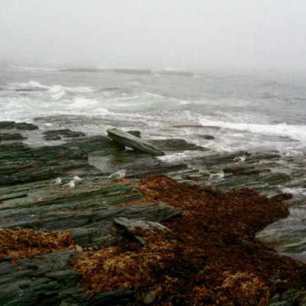 New England fog rolling, Apple iPhone 3GS