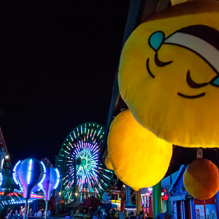 Emoji Amusement, Canon EOS REBEL T6S, Canon EF-S 18-135mm f/3.5-5.6 IS STM