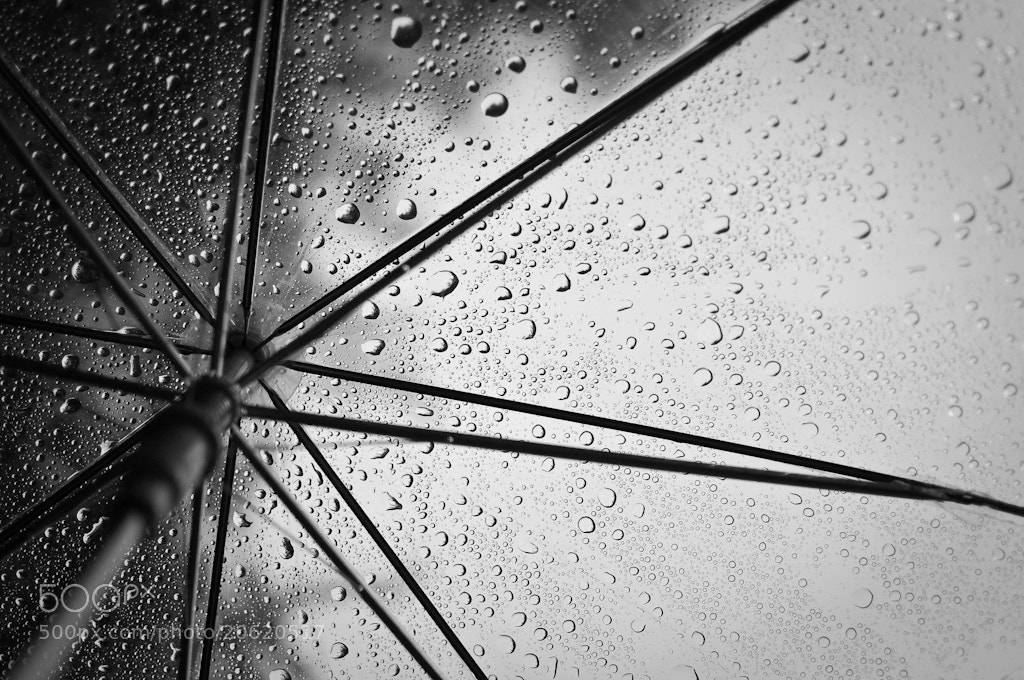 Photograph Drops by Bornil P on 500px