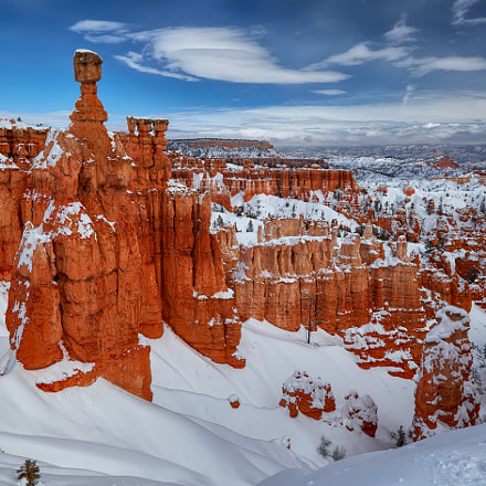 Bryce Canyon in Snow, Canon EOS 6D, Canon EF 24-105mm f/4L IS USM