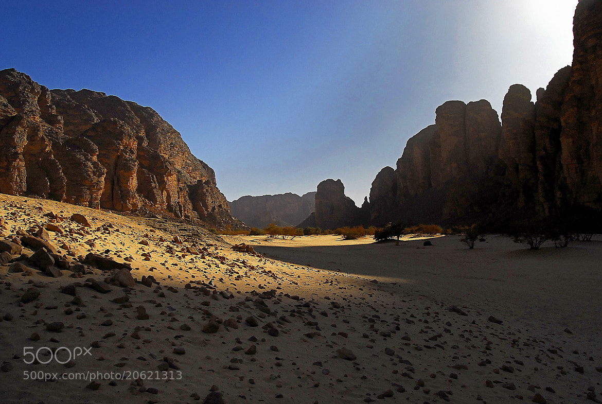 Photograph In the desert you can remember your name by Mehdi Boutarouk on 500px