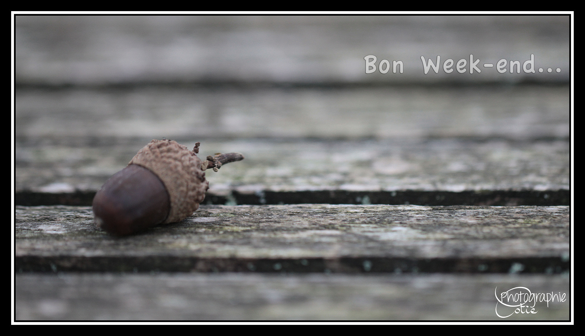 Photograph Have a nice Week-end! by Cotie Photographie on 500px