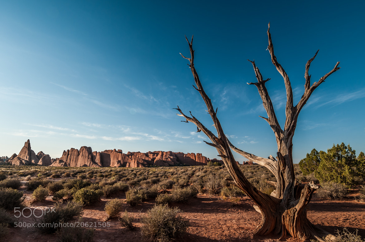 Photograph Arches NP by Steffen Machatschke on 500px