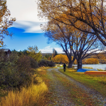 South Island Autumn Colors, Canon EOS-1D X, Canon EF 35mm f/1.4L II USM
