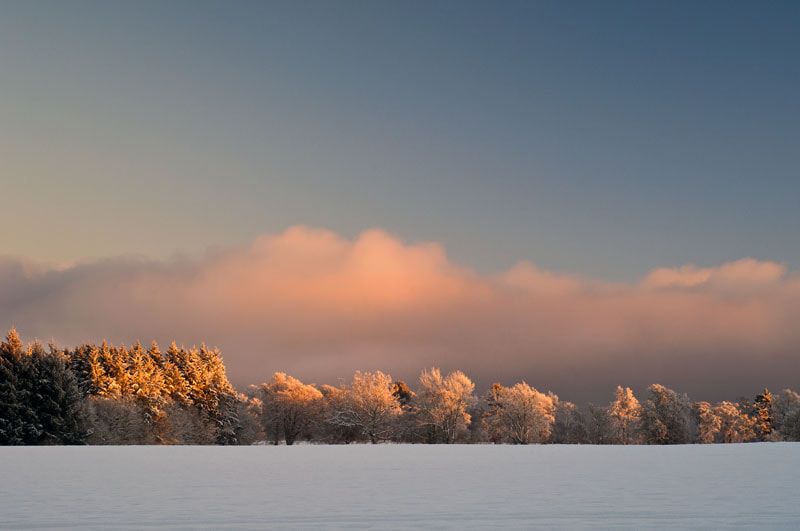Photograph Winter Light, Foulis, Ross-shire, Scottish Highlands by Heather Leslie Ross on 500px