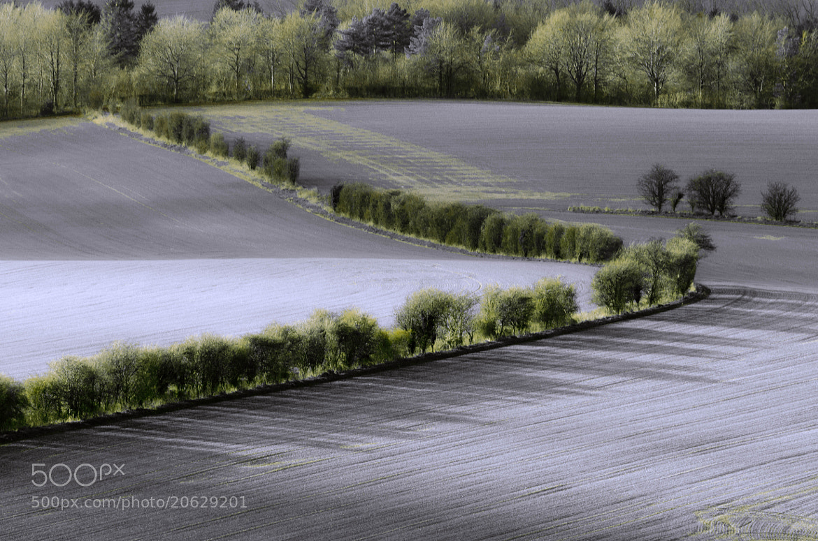 Photograph The Field by Pawel Niktos on 500px